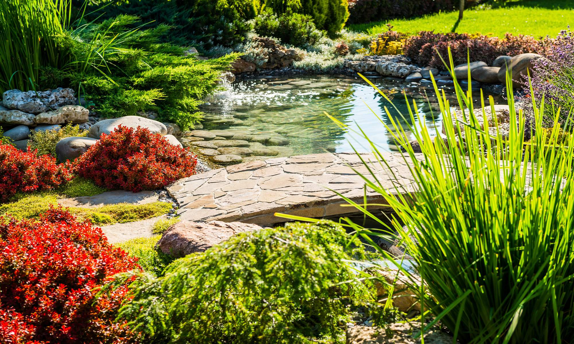Martinez Landscaping designs beautiful outdoor spaces